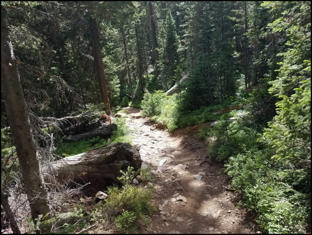 Hiking Trail Odessa to Fern My Favorite hike in Rocky Mountain National Park