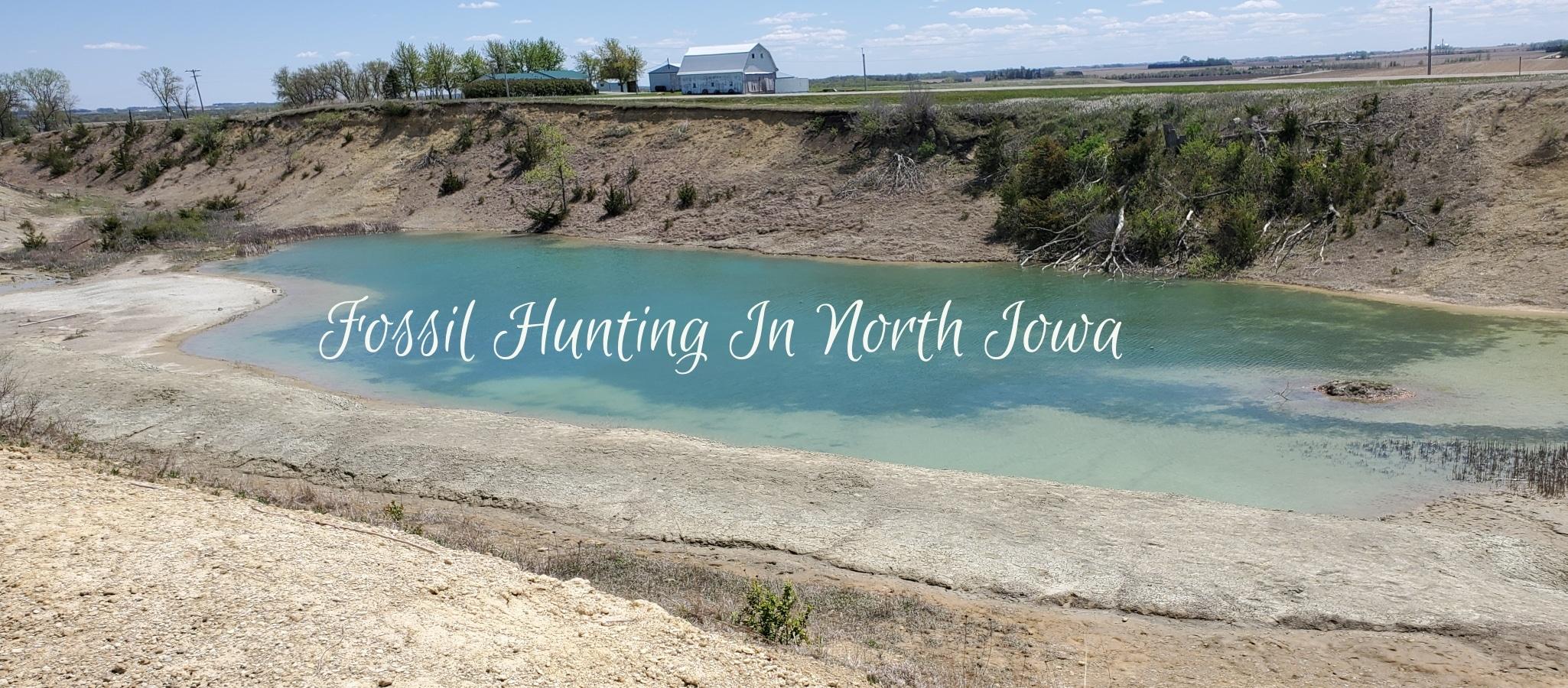 Rockford Fossil Prairie Area