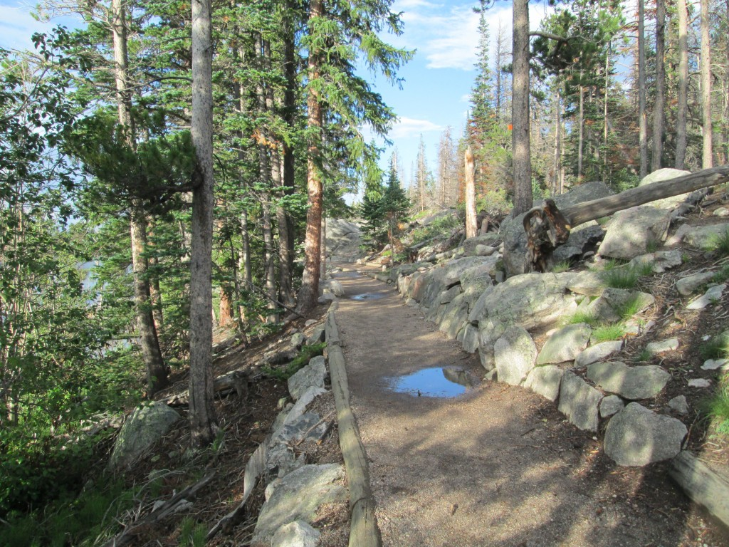 Trail At Sprague Lake