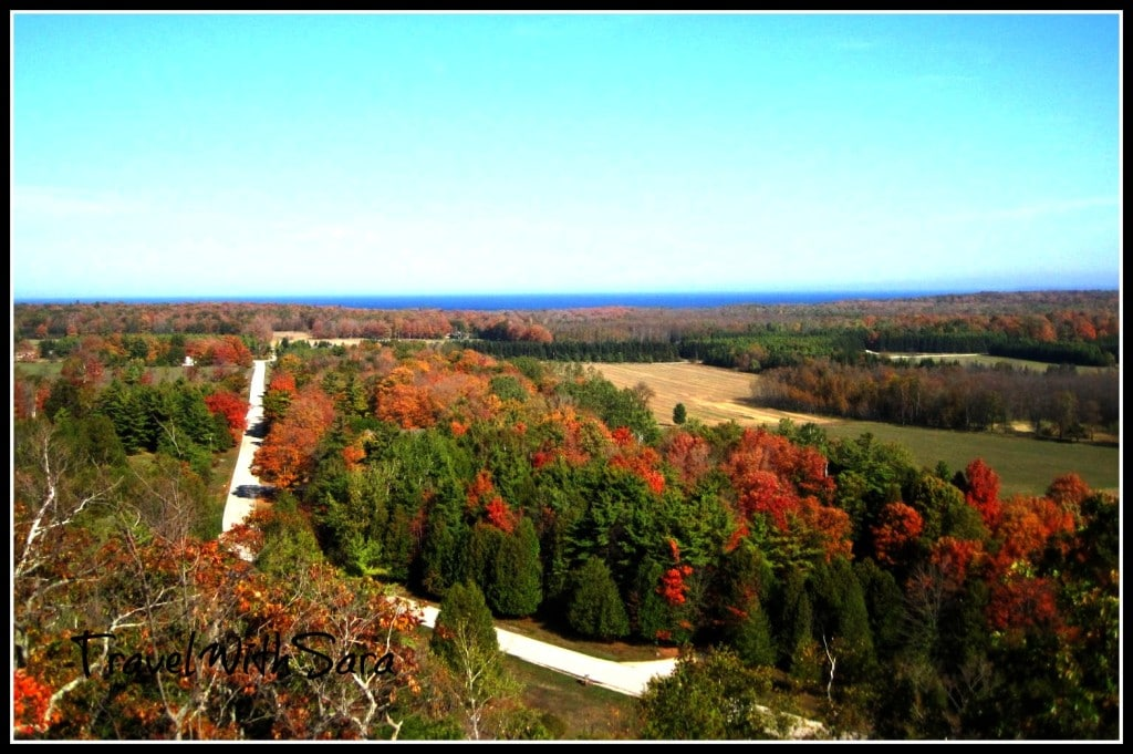 View From Tower In Washington County