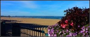 Beach From Boardwalk