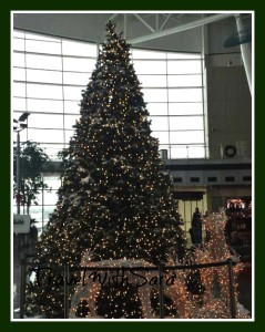 Christmas Tree Indianapolis Airport