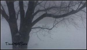 Iowa Blizzard