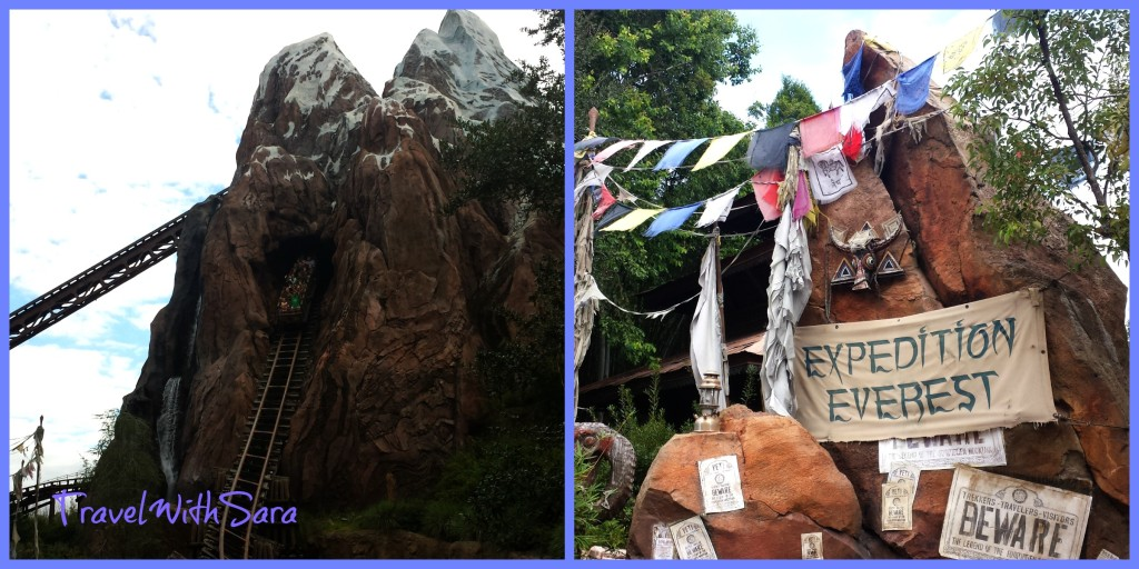 Animal Kingdom Expedition Everest