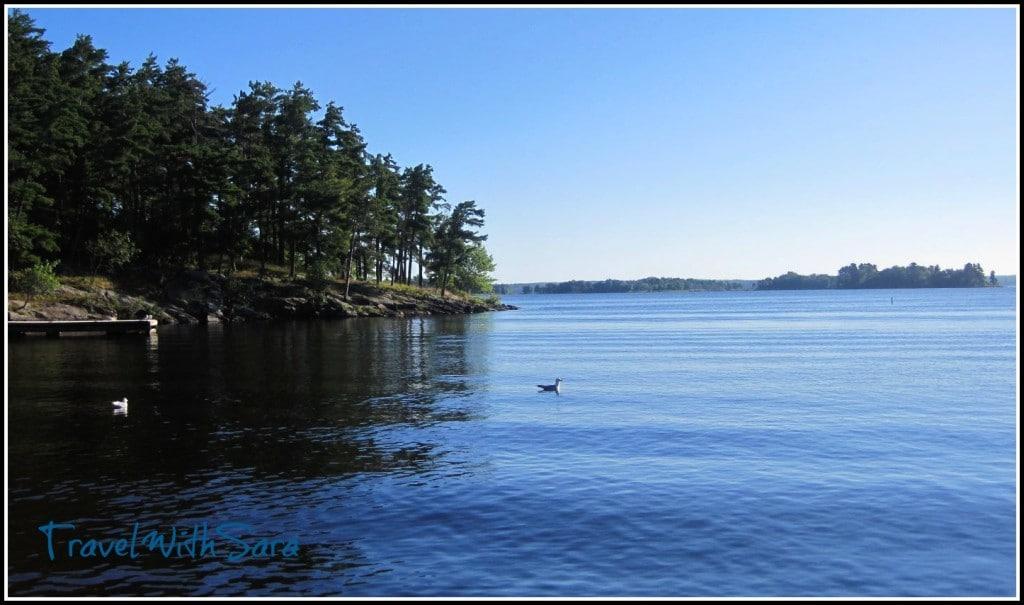 Wildlife Viewing Lake Kabetogama