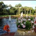 Orange Gardens