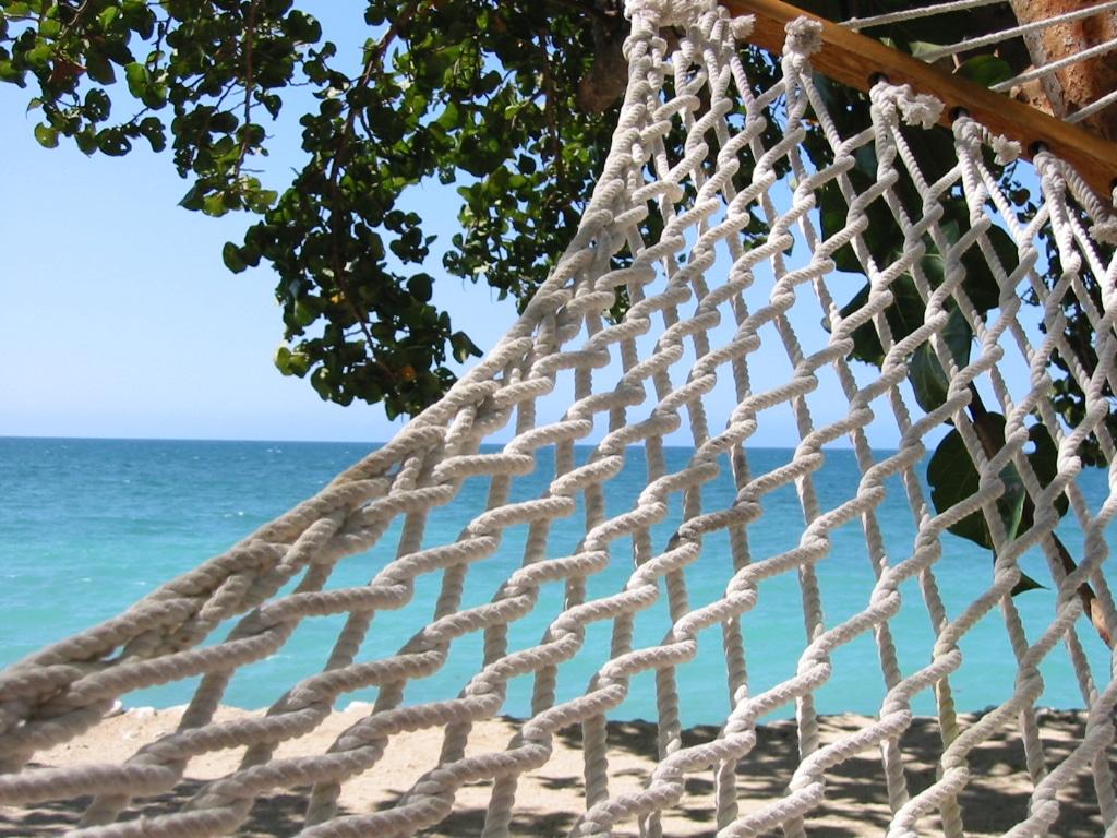 Bluefields Jamaica Hammock