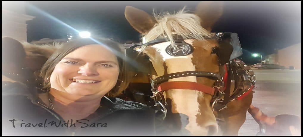 Sara and horse