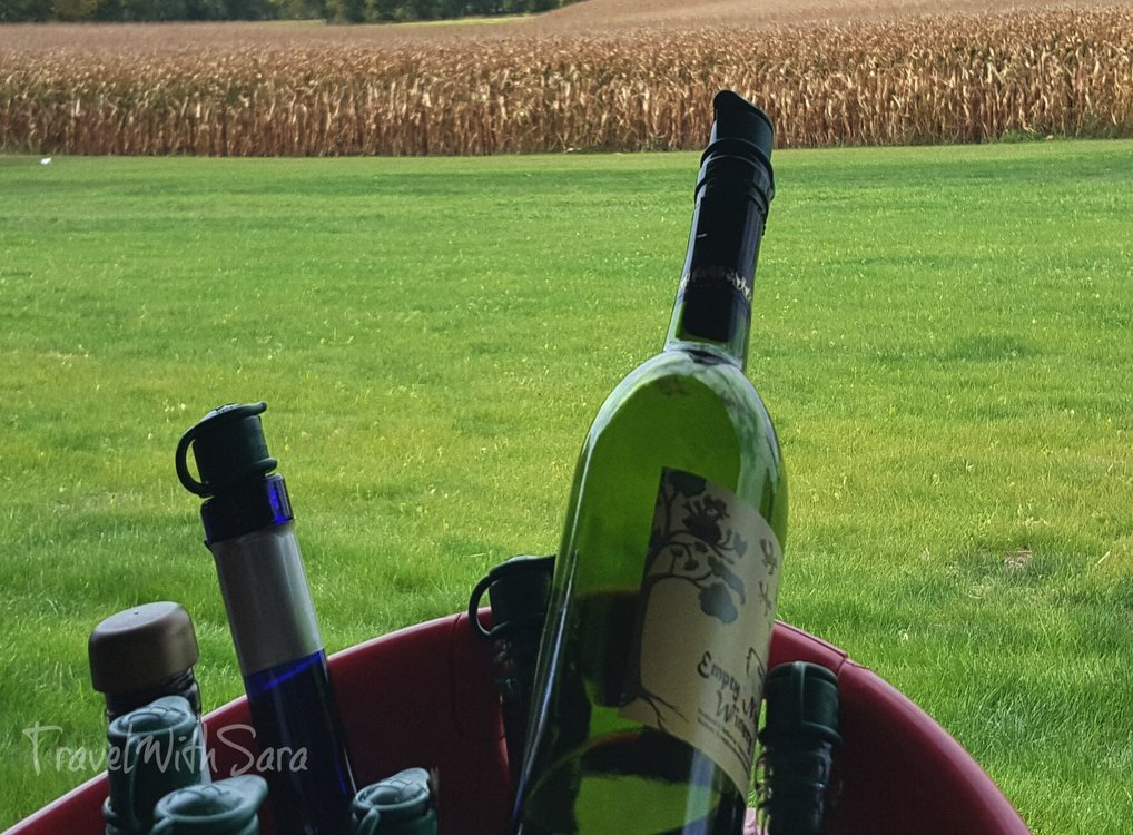 wine and corn field