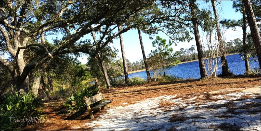 nature setting along trail