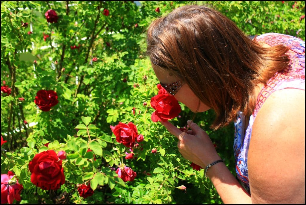 Sara with roses