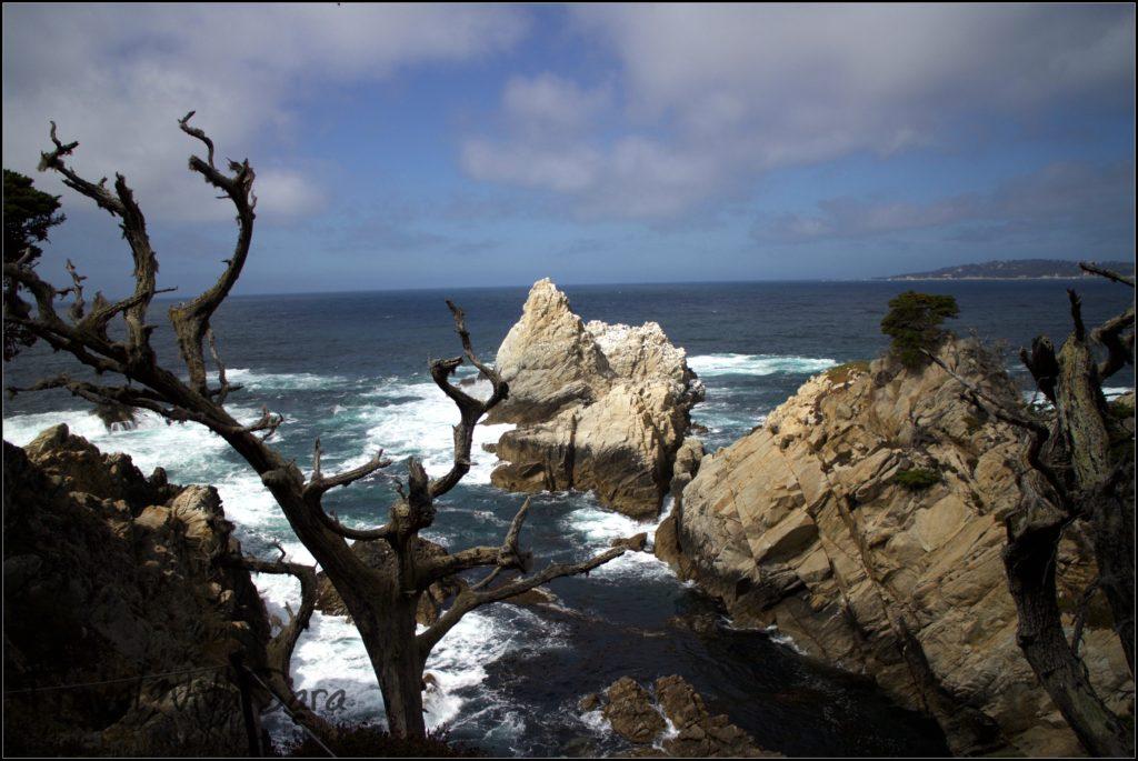 California near Carmel By The Sea