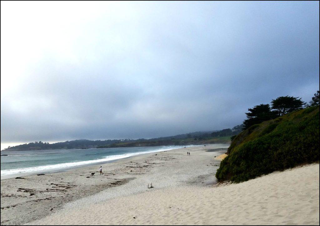 Ocean Carmel