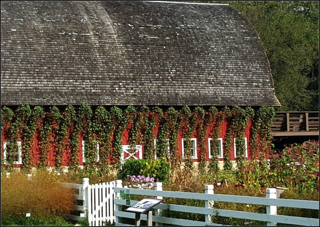Seed Savers Barn