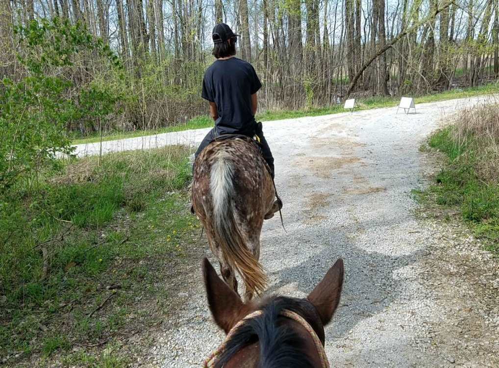 Horseback Riding In Hamilton County Indiana
