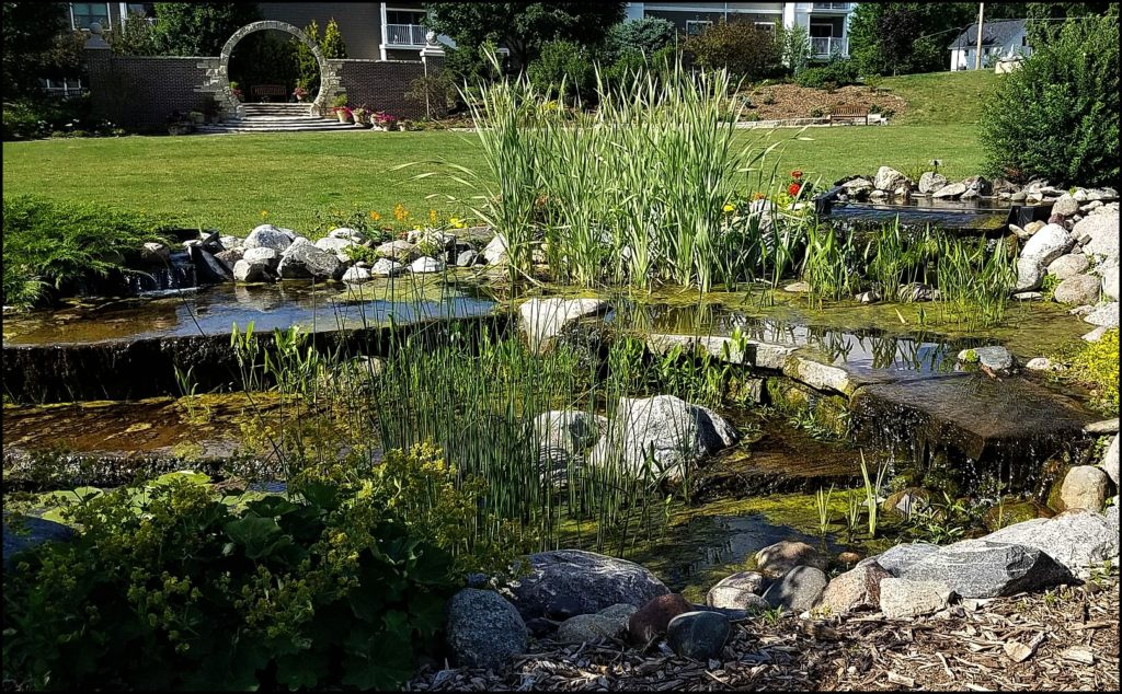 North Iowa Gardens