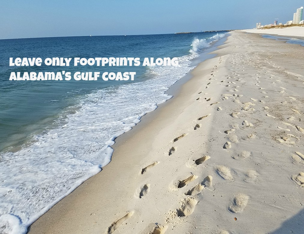 Leave Only Footprints Alabama Beaches