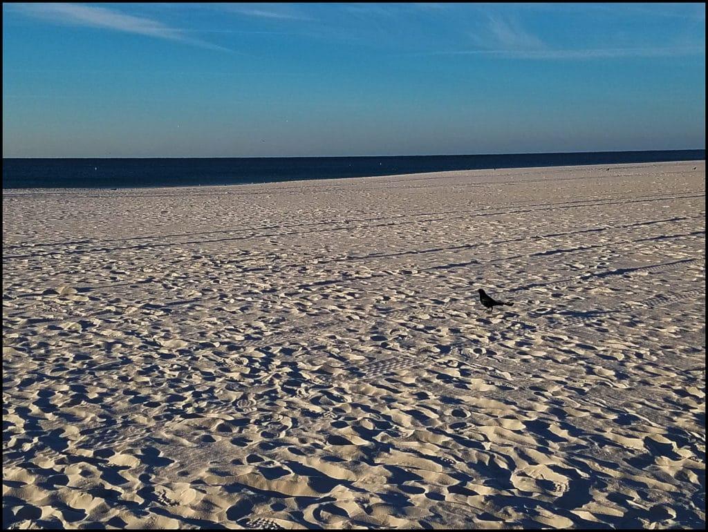 Gulf Shores Beach