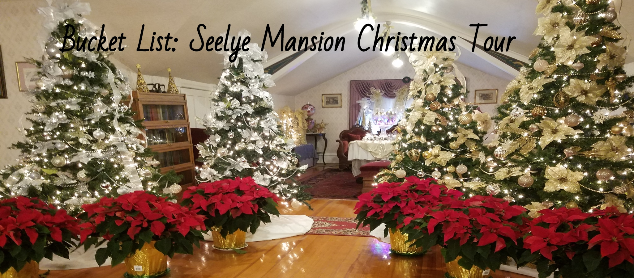 Seelye Mansion Tour Abilene Kansas