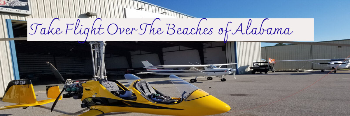 Beach Flight Aviation Alabama