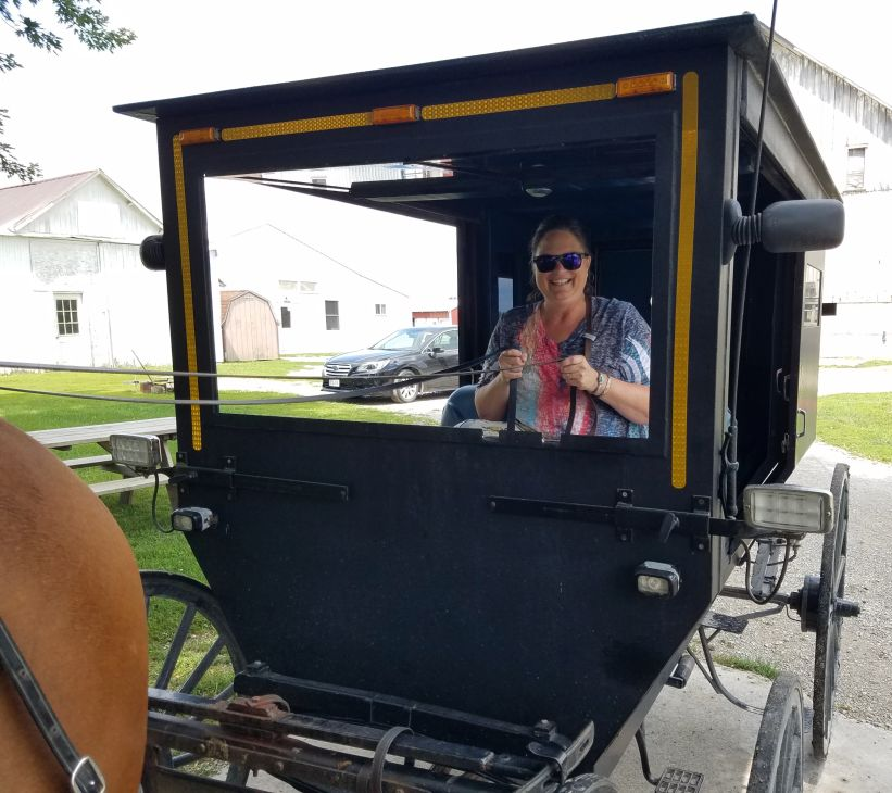 Buggy Ride Arthur Illinois