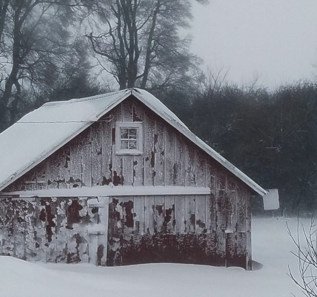 Iowa Shed and Snow