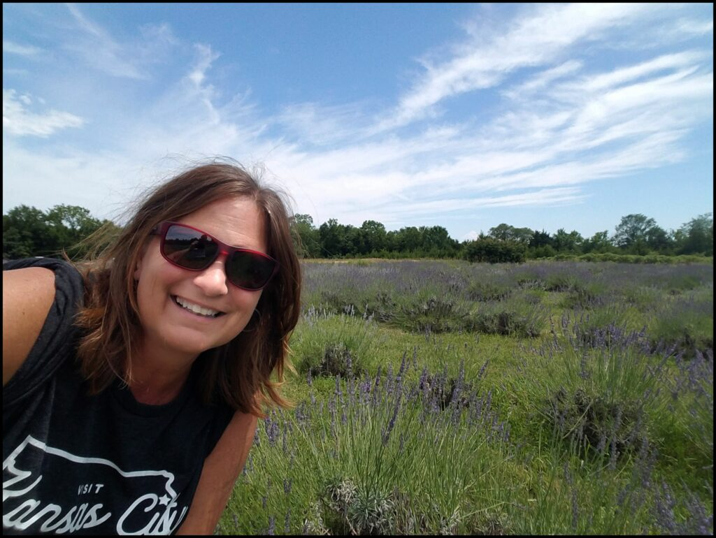 Lavender Farm Lawrence Kansas