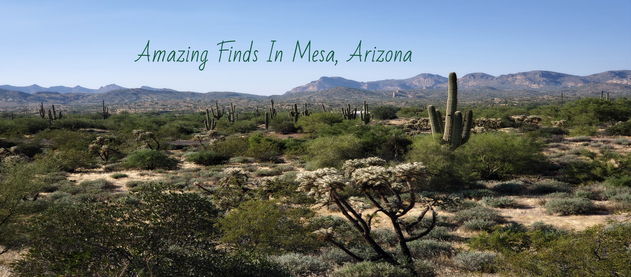 Mesa, Arizona- There's A Whole Lot Going On