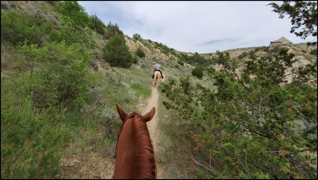 Trail Ride Medora