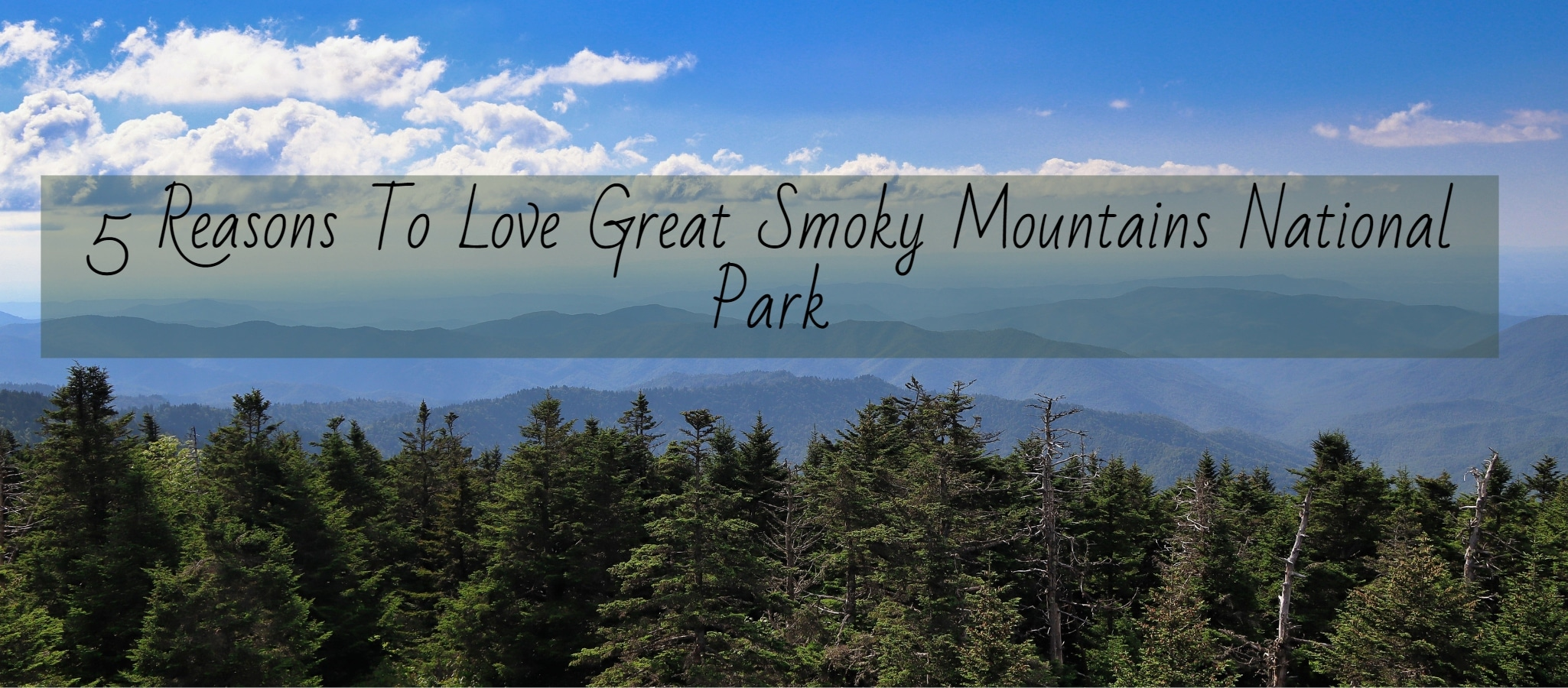 Great Smoky Mountains Feature